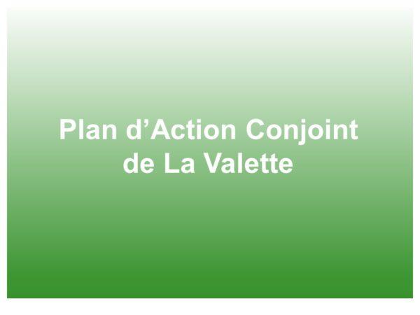 Plan d'Action Conjoint de La Valette (PACV)